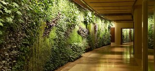 Hotel Sofitel Dubai The Palm Resort & Spa Lounge/Empfang