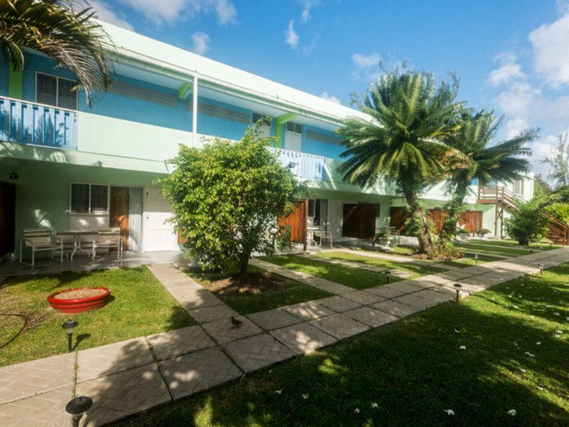 Palm Garden Garten