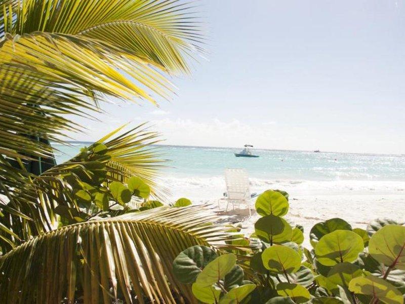 Palm Garden Strand
