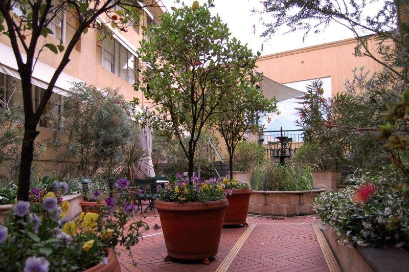 Arts Garten