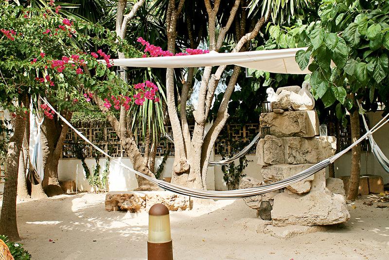 Bahia de Alcudia Tiere
