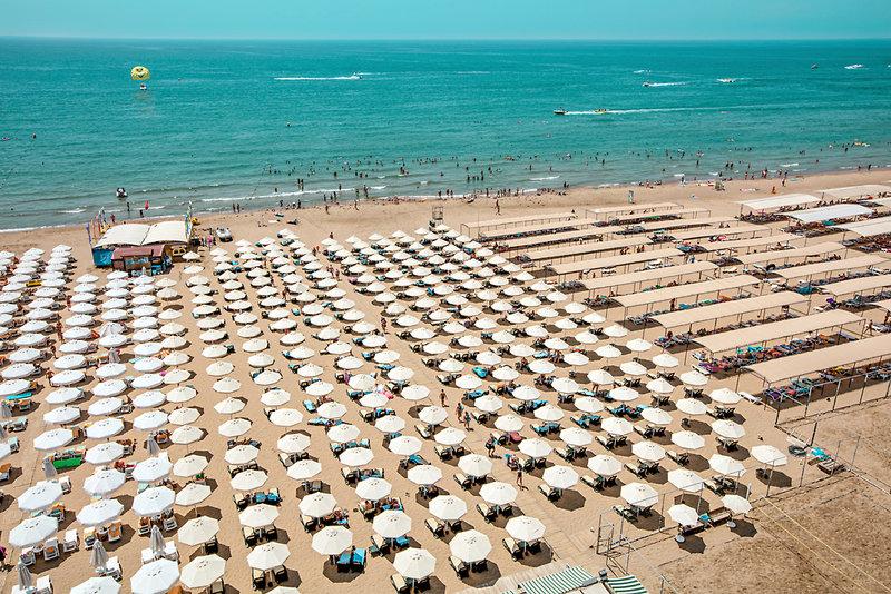 Trendy Verbena Beach Strand