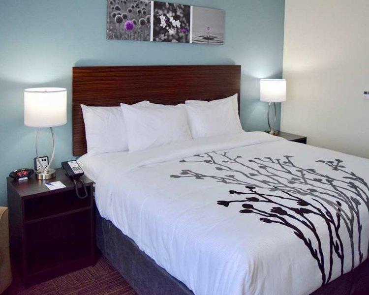 Sleep Inn & Suites near Westchase Wohnbeispiel