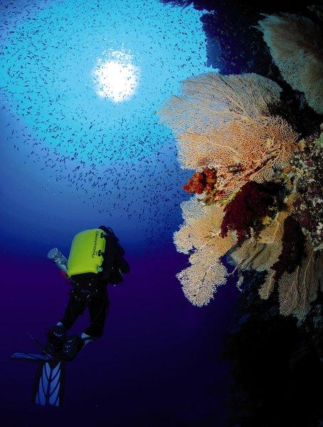 The Breakers Diving & Surfing Lodge Sport und Freizeit