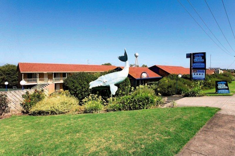 Blue Whale Motor Inn & Apartments Außenaufnahme
