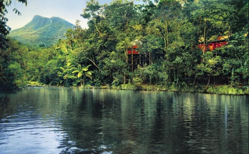 Silky Oaks Lodge & Healing Waters Spa Landschaft