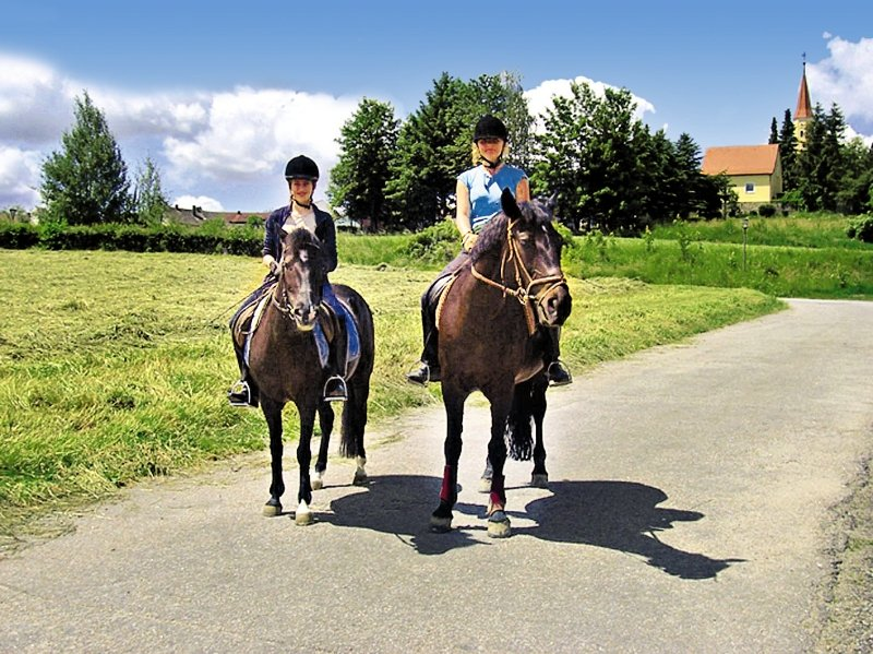 Reiterhof Runding Sport und Freizeit